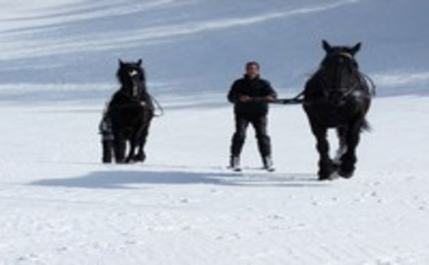 La Colmiane - Skijoëring