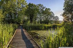 Isère : un paradis pour la biodiversité