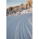 activité de montage Téléphérique touristique : Accès aux activités nordiques du Mont-Chéry