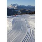 activité de montage Téléphérique touristique : Accès aux activités nordiques des Chavannes