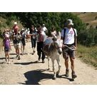 Balade en ânes avec accompagnateur - Office Municipal de tourisme d'Auris en Oisans