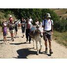 Balade à dos d' âne - Office Municipal de tourisme d'Auris en Oisans