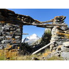 Montée bavarde et gourmande à I'alpage du Vallon : Randonnée découverte