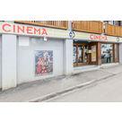 activité de montage Cinéma : Cinéma de l'aiguille