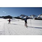 activité de montage Piste de ski de fond : Ski Nordique