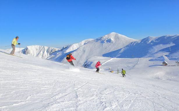 STATANMSM01630008 - w-ski
