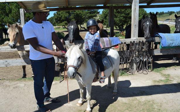 STATANMSM01660011 - Equitation (4)