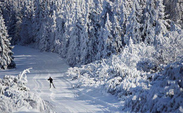 STATANMSM2V500956 - neige paysage 027