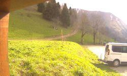 Webcam Les Cochettes