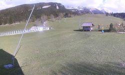 Webcam Domaine des Rambins