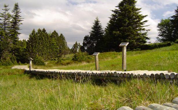 La Croix de Bauzon - Sentiers