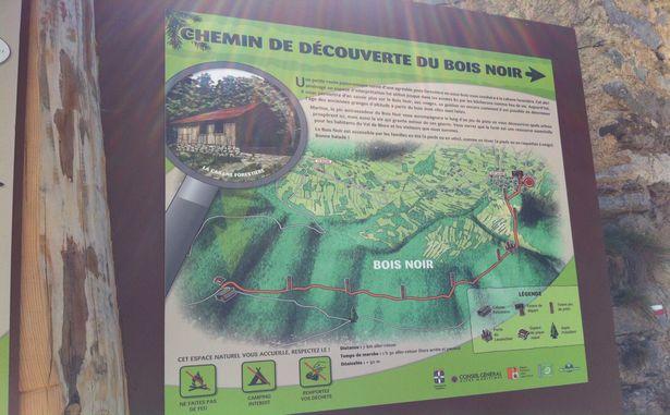 La Colmiane - Chemin de randonnée
