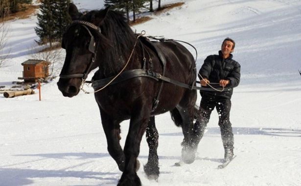 La Colmiane - Skijoëring chevaux