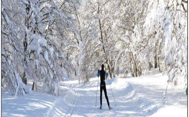 Laguiole - Ski nordique